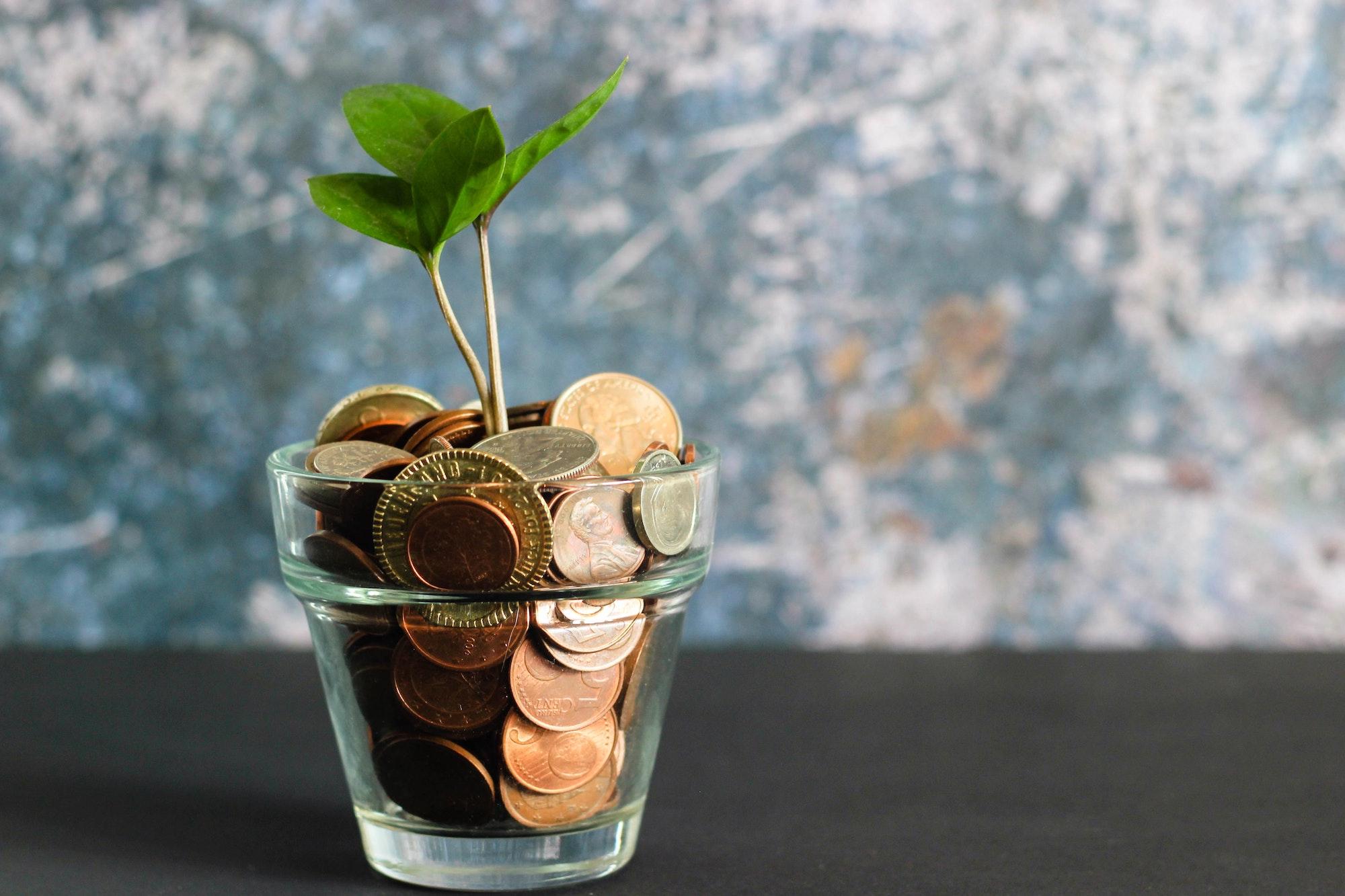 Mood Finance, Conseil financier TPE, l'expertise au service de toutes les entreprises